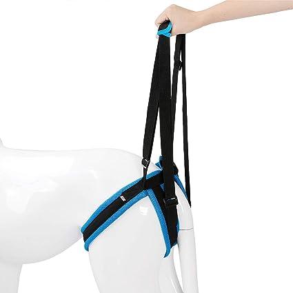 ZDJR Supporto Lift imbragatura con la Maniglia per Gamba Posteriore del Cane Cane Supporto ausiliario A Piedi Riabilitazione Imbracatura Sling assistere,Blu,S