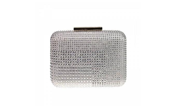 PINKO Bag TOLEDO CLUTCH STRASS CON TRACOLLA (Silver)  Amazon.it ... 34ed167e58f