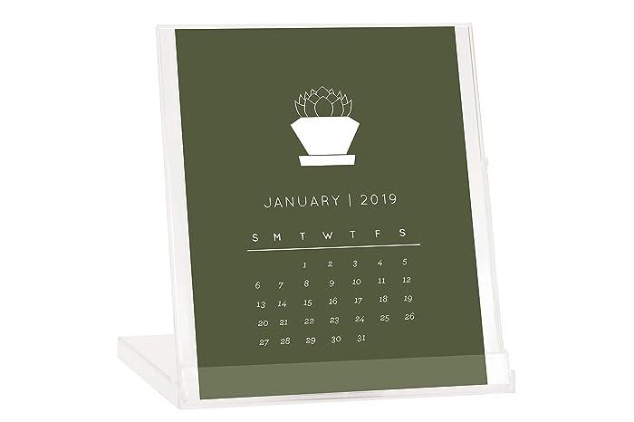 2019 Calendars Buy Amazon.com: Succulent 2019 Desktop Calendar   BUY 2 GET 1 FREE
