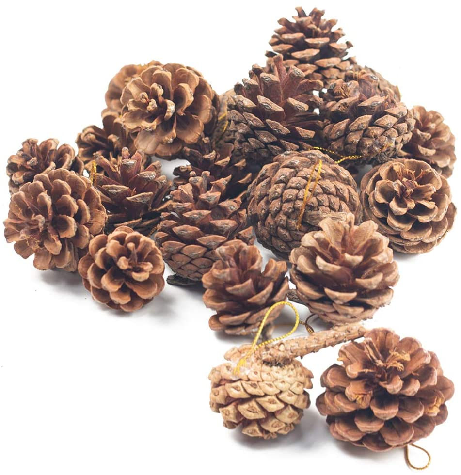 Natural Pine Cones, Lodge Pole Decorative Fall Winter Holiday Home Decor Vase Filler, Christmas Tree Ornaments,18 PCS