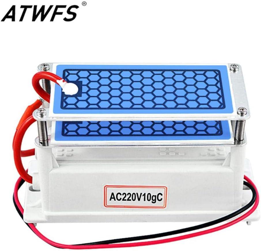 Generador de ozono ATWFS 220v 10g Purificador de Aire para el ...