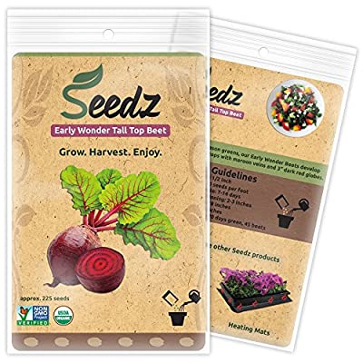 CERTIFIED ORGANIC SEEDS (Apr. 225) - Early Wonder Tall Top Beet Seeds - Heirloom Seeds - Non GMO, Non Hybrid - USA