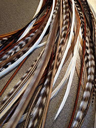 10 Hair Feathers and Beads, 100% Real Rooster Feather Hair Extensions, Long Grizzly, Brown, White, NB