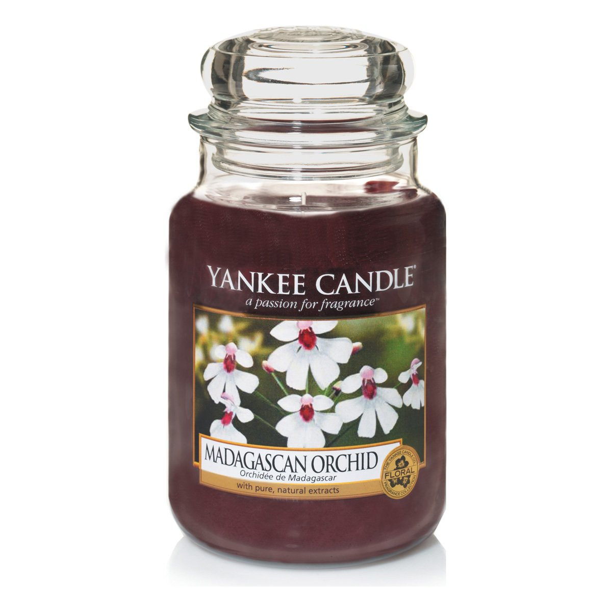 Yankee Candle Large Jar Candle, Madagascan Orchid by Yankee Candle B00YNAWL4Q