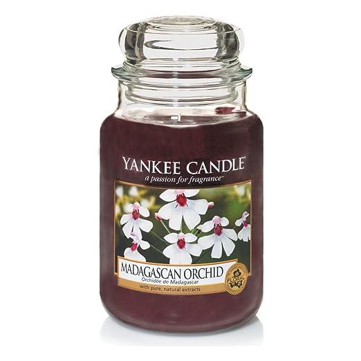 17 opinioni per Yankee Candle, Candela profumata in barattolo di vetro, Madagascan Orchid,