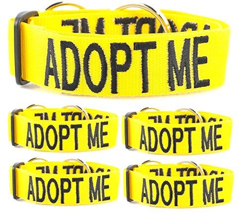 (5 For Price of 3 L-XXL Semi Choke Adopt Me Dog Collars By FriendlyDogCollars)