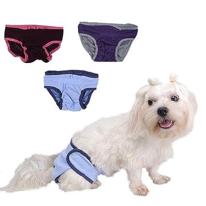 taonmeisutm hembra de cachorro de mascota Perro Sanitaria Pant Higiene para hombre Simple estilo acogedor cómodo