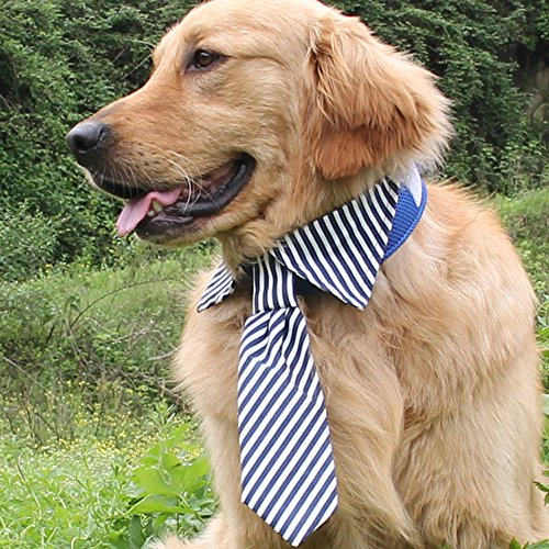 Large Dogs Costumes Tuxedo Tie Golden Retriever Bowtie Neckwear Wedding Party Accessoires for Big Pets (Blue)