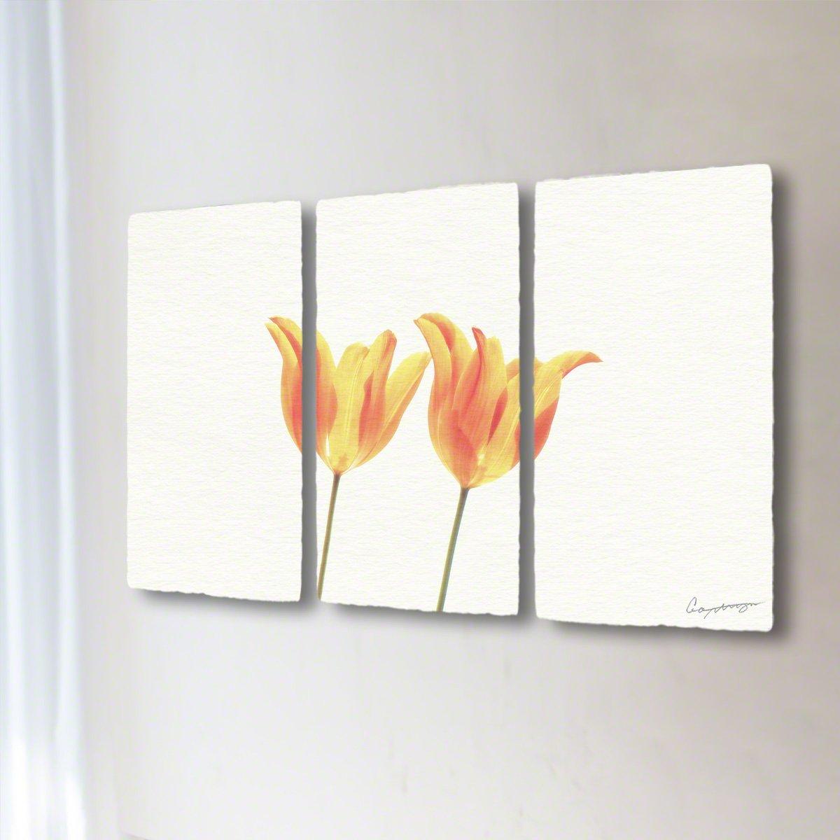 和紙 アートパネル 3枚 続き 「透けるオレンジ色のチューリップ」 (96x54cm) 花 絵 絵画 壁掛け 壁飾り インテリア アート B07BGTR4QW 34.アートパネル3枚続き(長辺96cm) 98000円|透けるオレンジ色のチューリップ 透けるオレンジ色のチューリップ 34.アートパネル3枚続き(長辺96cm) 98000円