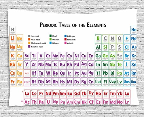 Ambesonne Science Tapestry, Chemistry Primary School Students Geek Nerd Lessons Classes Smart Kids Art Print, Wall Hanging for Bedroom Living Room Dorm, 80 W X 60 L Inches, Multicolor ()