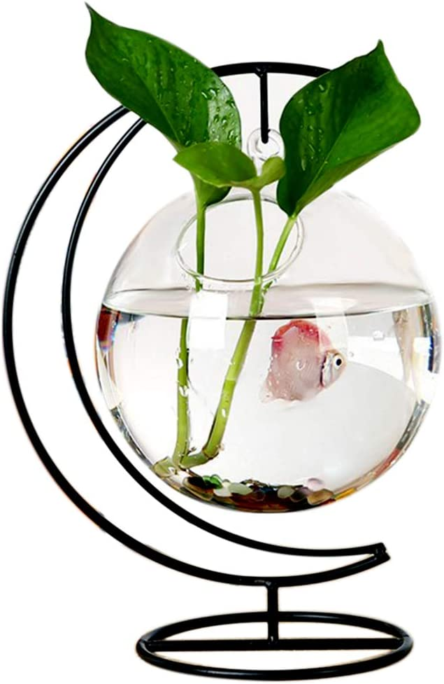 RuiyiF Desk Hanging Fish Tank Bowl with Stand Creative, Small Table Glass Fish Vase Aquarium for Home Decor (1 Fish Bowl)