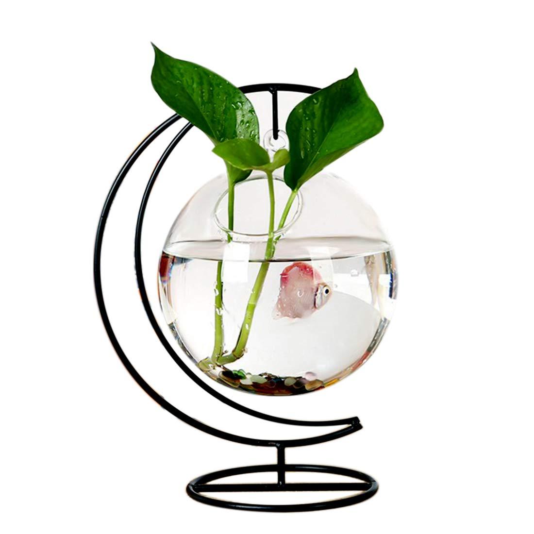 RuiyiF Desk Hanging Fish Tank Bowl with Stand Creative, Small Table Glass Fish Vase Aquarium for Home Decor (1 Fish Bowl) by RuiyiF