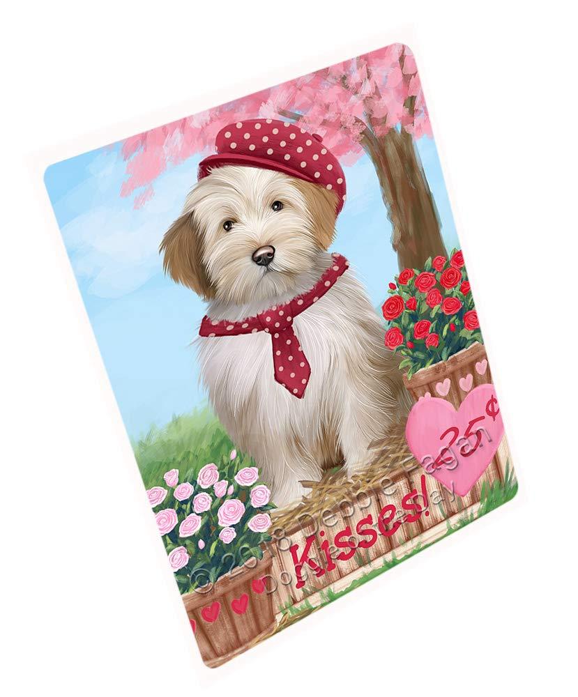 Doggie of the Day Rosie 25 Cent Kisses Tibetan Terrier Dog Blanket BLNKT125634 (50x60 Sherpa)