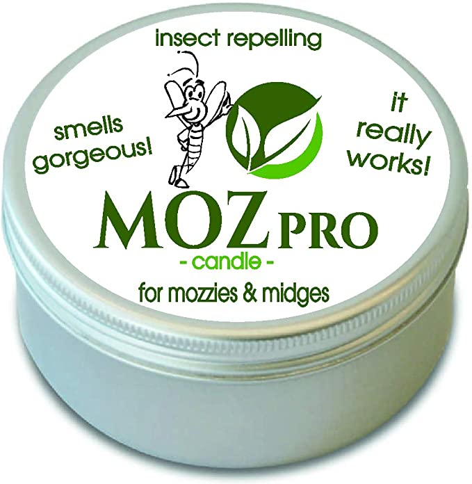 Midge /& Mosquito Repellent Candle 40 Hour Burn Time The Wee Midgie Lavender /& BOG Myrtle Candle JAR for Midges /& Mozzies Insect Repelling