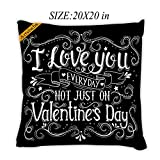 Artsbaba Pillowcases I Love You Everyday Not Just On Valentine's Day Zipped Pillowcase Decorative Throw Pillow Cover 20''x20''