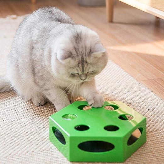 Juguete para gatos Giradiscos de gato eléctrico hexagonal automático Caja de gato divertida Suministros de juguetes para mascotas - Verde: Amazon.es: Hogar