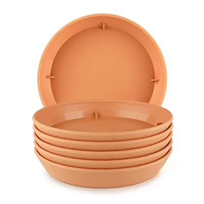 T4U Plastic Plant Pot Saucers with Faux Clay Finish 10 Inch Orange Set of 6, Round Hevay Duty Large Flowerpot Tray Resin Plant Drip Saucer Base PP Coaster Pallet for Succulent Planter Pot : Garden & Outdoor