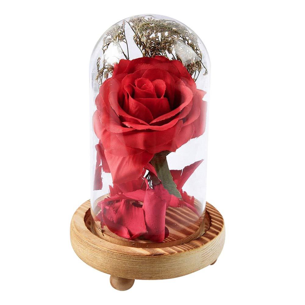 Chenrui La Bella y la Bestia Rose Kit Completo para la ...