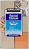 Kirkland Signature Facial Tissue, 2-Ply - 90 ct - 12 pk