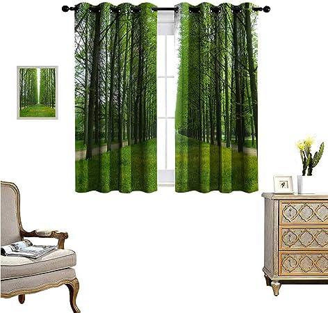 Fenggruihome Cortina Opaca para Puerta corredera de Patio para salón/Dormitorio, terraza Verde Especial, 140 x 99 cm: Amazon.es: Hogar