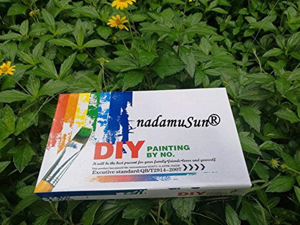 Peinture /à lhuile num/érique Kits de Toile Junior pour Adultes Enfants Enfants IWJAI Peinture par num/éro Pigment Peinture Murale Fleur 16x20 Pouces Toile de Lin