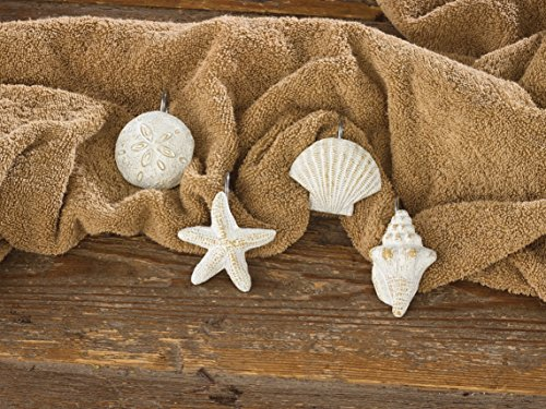 Park-Designs-Shell-Shower-Curtain-Hooks-Set-of-12