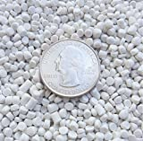 Victory Pellets Extra Heavy (25 pounds) Plastic Pellets for Weighted Blankets, Corn Hole Bags, Reborn Dolls, Bears, Crafts, Draft Stoppers, Game Changer Bags. Machine Washable & Dryable. Made in USA.