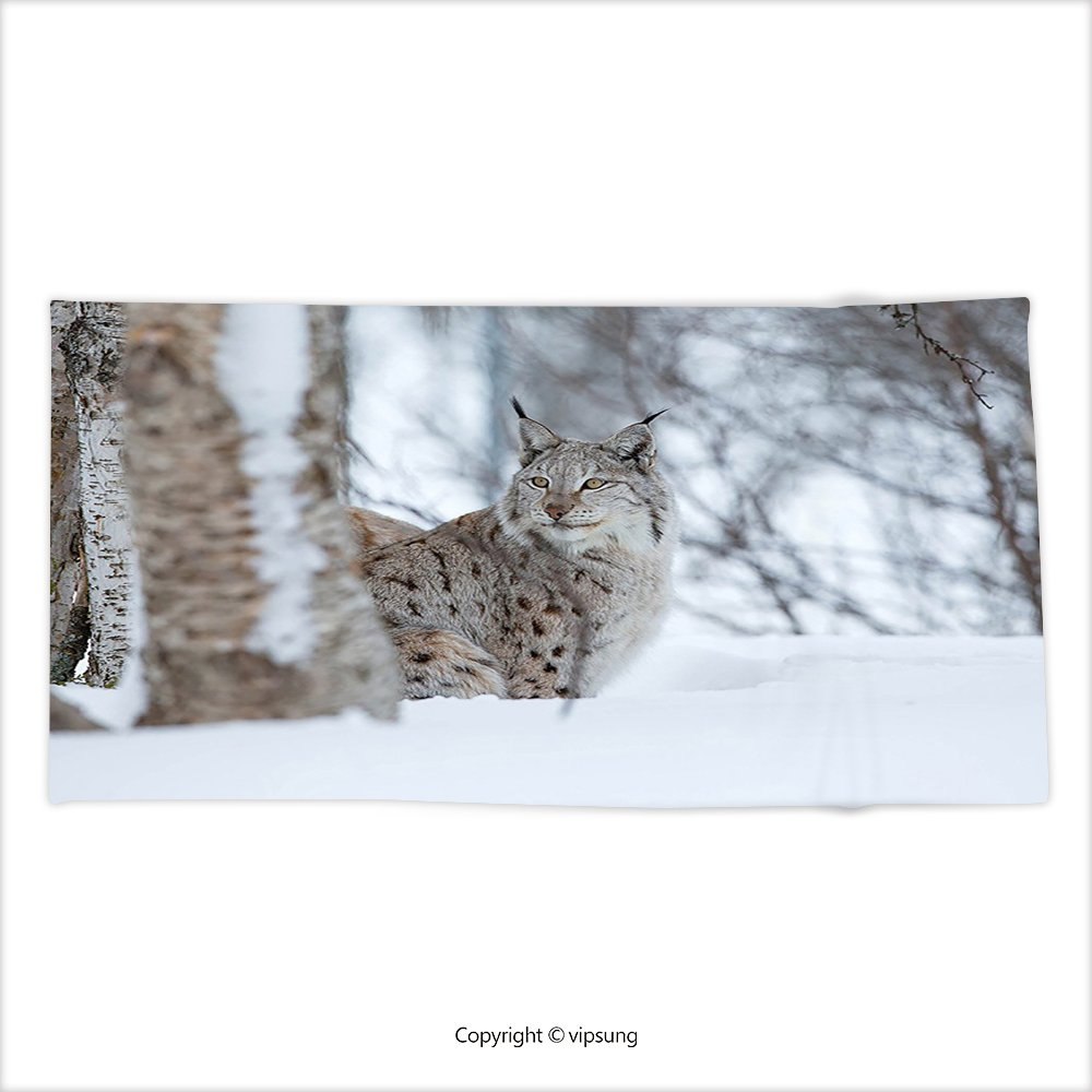 vipsung Ultra de Microfibra Suave Toalla de Mano Animal Sketchy Hechos a Mano de Imagen de Safari Animal Salvaje León Arte impresión Gris Negro y Gris y ...