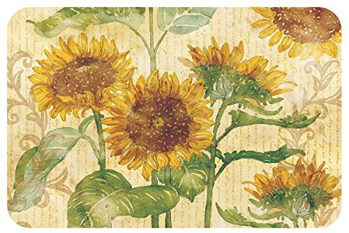 Reflections of the Sun Vinyl Reversible Placemats Set of Four