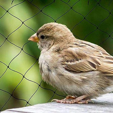 Filet Anti-Oiseaux en Nylon Tressé de 10 X 5 M Filet à Protection Extra-Fort r3f
