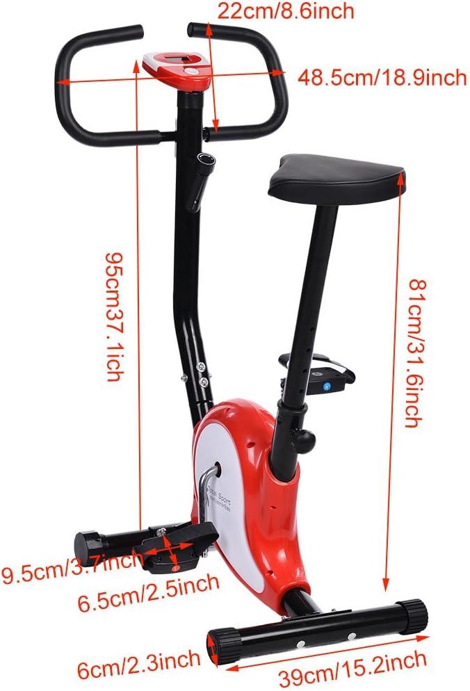 AMDirect Bicicleta Estática Spinning de Entrenamiento Plegable ...