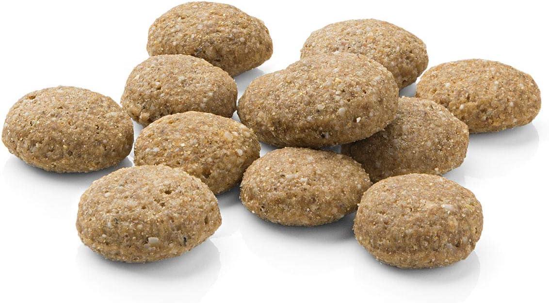 Mera Pure Sensitive Adult - Pienso de salmón y arroz para Perros, para la Dieta Diaria de Perros con alergias alimenticias