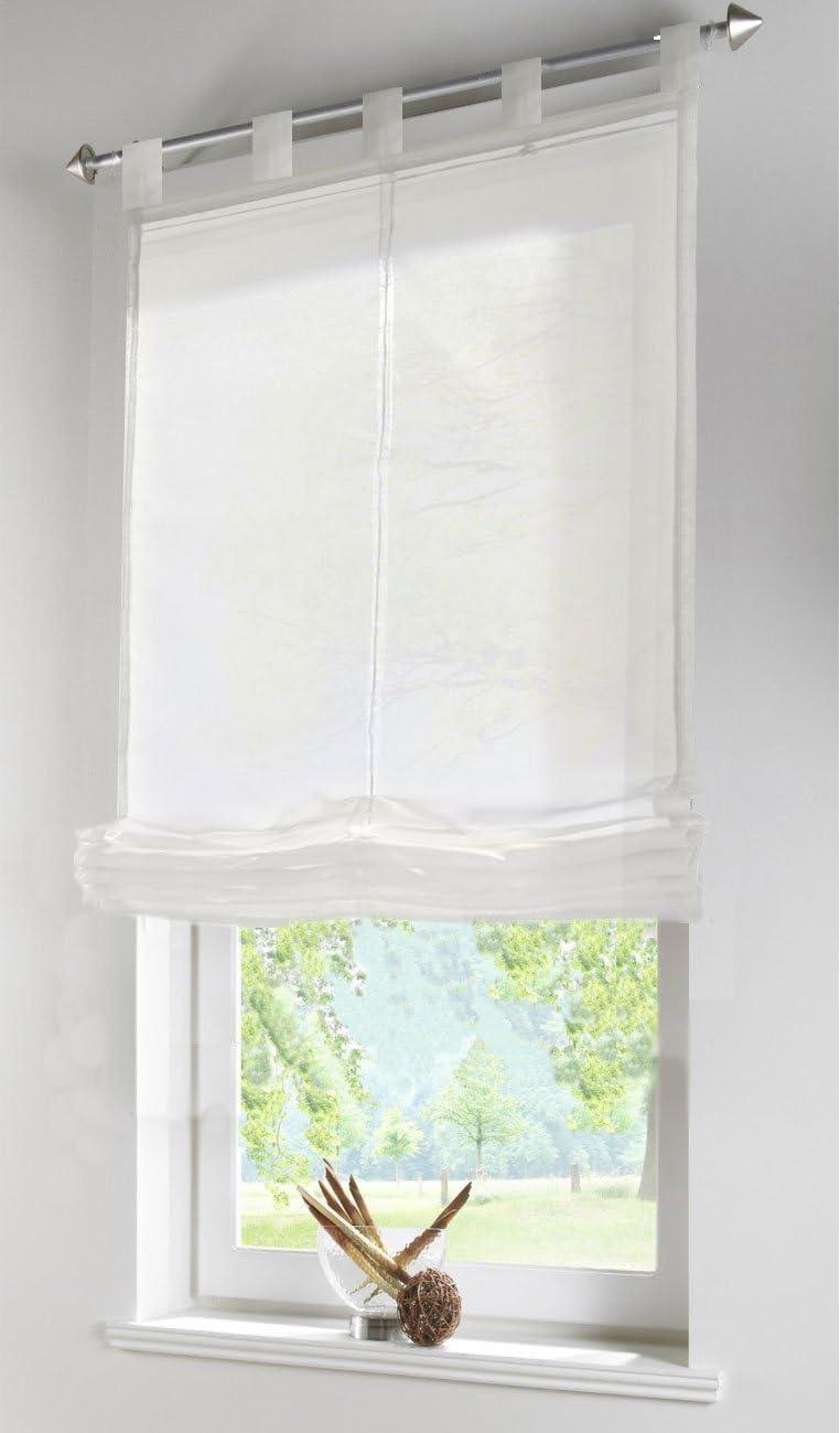 610070 HxB 140x60 Pink Gardinenbox Transparentes Raffrollo Uni aus Voile mit Schlaufen