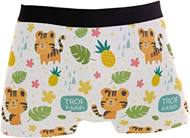 Pineapples Mens Boxer Briefs Soft Breathable Stretch Low Rise Trunks Briefs Underwear for Men Boys
