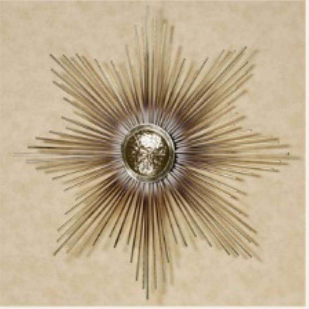 Neyouyou Creativo Flor de Hierro Forjado Pinturas Decorativas Cuadro Modular Arte de la Pared Pintura de la Lona para la Sala de Estar Sin Marco, Blanco, 70x70cmx1pc