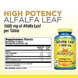 Nature's Life Alfalfa Leaf Tablets, 1000Mg, 250