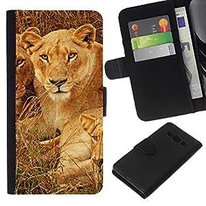 - NATURE ANIMAL CUBS SAVANNAH AFRICAN LION - - Prima caja de la PU billetera de cuero con ranuras para tarjetas, efectivo desmontable correa para l Funny House FOR Samsung Galaxy A3