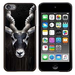 Dragon Case - FOR Apple iPod Touch 6 6th Generation - impala horns black nature minimalist - Caja protectora de pl??stico duro de la cubierta Dise?¡Ào Slim Fit