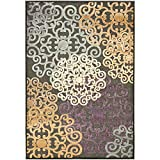 Safavieh Paradise Collection PAR102-330 Charcoal and Multi Viscose Area Rug (8′ x 11'2″)