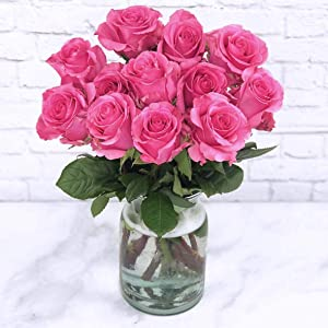 Falcon Farms Inc Pink Roses