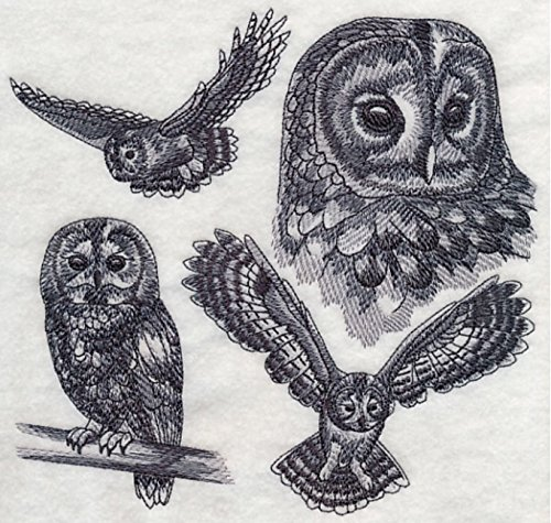 Tawny Owl Custom Embroidered Sweatshirt Shirt (Apparel Tawny)