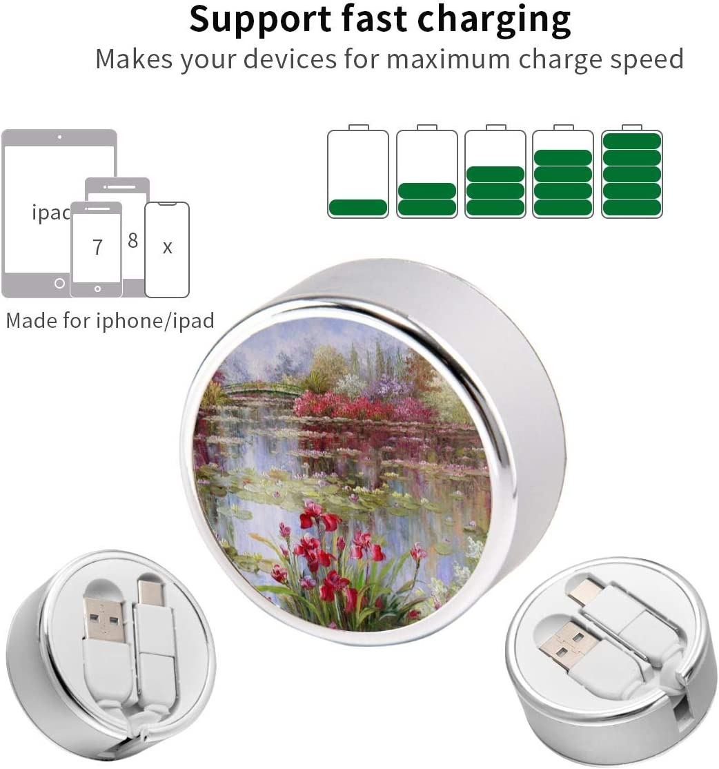 Watercolor Landscape Swans Retractable Charging Cord Multi Charger Cable Type C 2 in 1 Charge Adapter