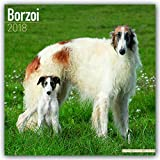 Borzoi Calendar - Dog Breed Calendars - 2017 - 2018 wall Calendars - 16 Month by Avonside