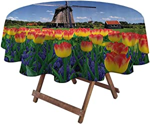 """Spring Tablecloth Apartment Decor for Garden Patio Party Tabletop Tulip Blooms with Classic Dutch Windmill Netherlands Countryside Springtime Picture 60"""" Diameter Yellow Blue"""