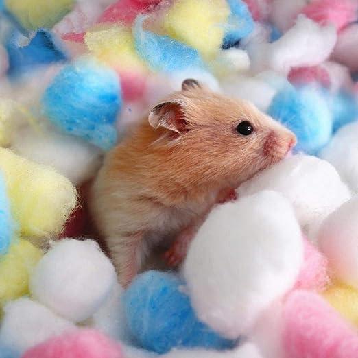 BRAVOSOLEIL 1 Bolsa de Invierno Bola de hámster algodón Colorido Caliente de la casa de la Jaula de Suministro de Relleno de Filtro Duradero y útil: Amazon.es: Productos para mascotas