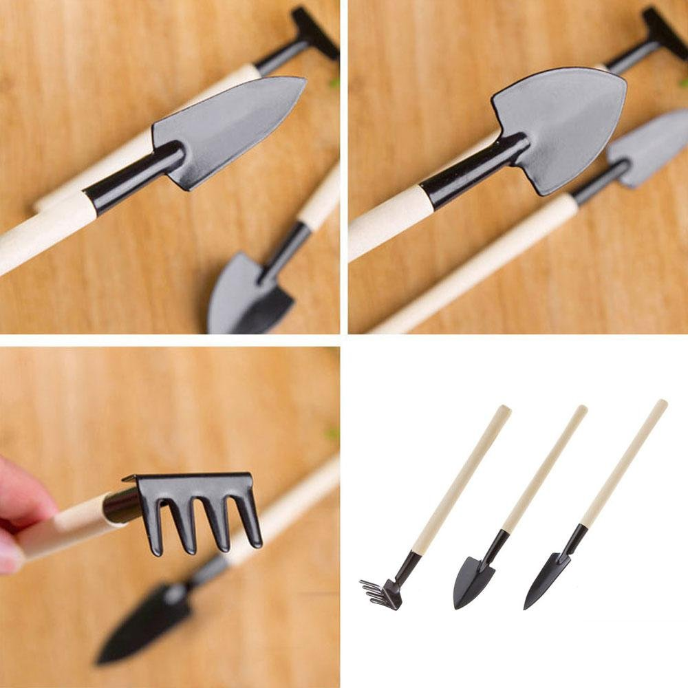 Amazon.com : Mini Garden Plant Tool Set Gardening Tool Small Wood Stick Shovel Rake Perfect for Succulent Cactus Herbs Indoor Miniature Plants (3 Pcs) ...
