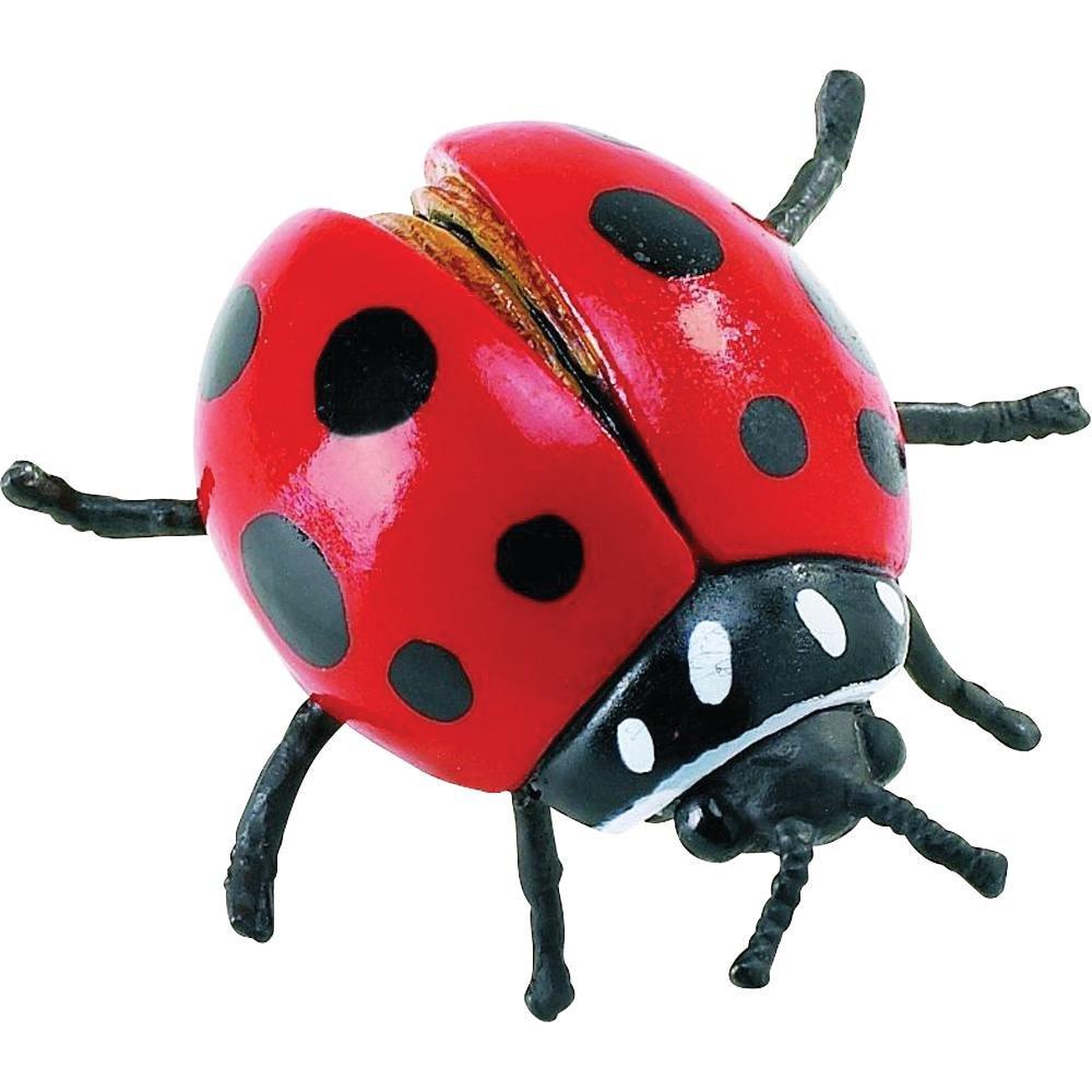 amazon com safari ltd hidden kingdom insects u2013 ladybug