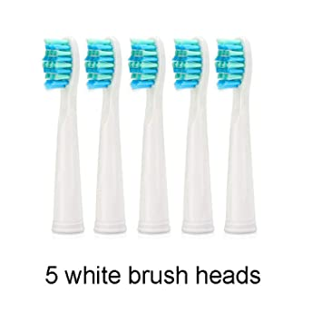 Sonic Christmas Hours.Sg 507 Sonic Electric Toothbrush With 3 Modes Amazon Com