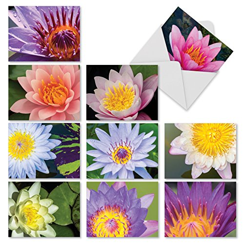 M3070 Lily Pond: 10 Assorted Blank All-Occasion Note Cards Are Graced with Images of Water Lilies, w/White Envelopes.