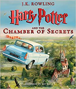 Image result for harry potter chamber illustrated